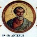 Anterus